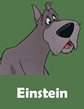 [Règle N°1 : Ne pas poster plus d'un message par page] Des noms à la suite - Page 3 Einstein