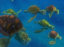 Personnages disney o squiz et les tortues le monde de nemo - Gwenvin sommier ...
